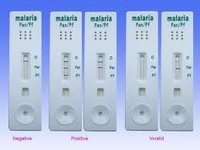 Malarial Ag test kit