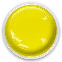 Yellow 2509 Exterior