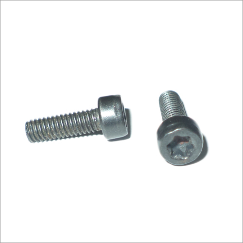 Metal Torx Screw