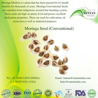 Moringa Seed (Conventional)