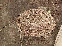 Sabai Grass Yarn