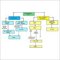 Cooking Oil Refinery Plants