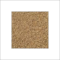 Bajra Cattle Feed