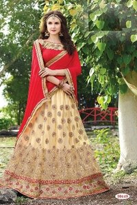Embroidery Designed Lehenga Choli