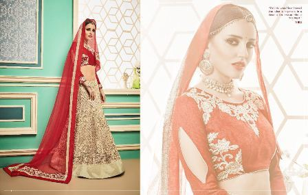 Embroidered Designed Lehenga Choli