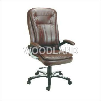 Director Finished Leather Chair