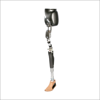 Artificial Limbs For Through Hip