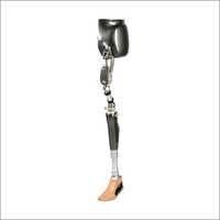 Artificial Limbs For Through Hip