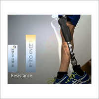 Rheo Knee 3