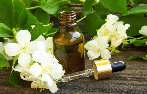Jasmine Sambac Oil