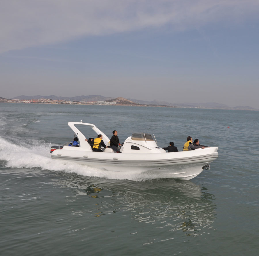 Liya 27ft/8.3m commercial RIB Inflatable Boat for sale
