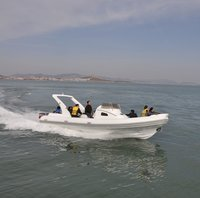 27ft/8.3m Military RIB Inflatable Boat