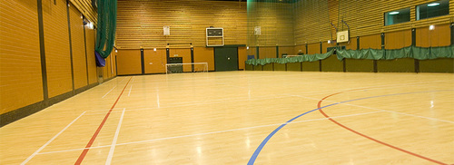 Wooden Sports Multipurpose Hall Flooring