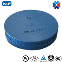 Ductile Iron Grooved Pipe Cap