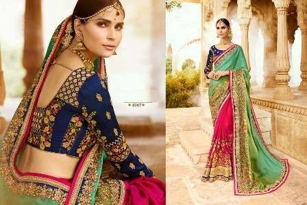 Heavy Designed Sari