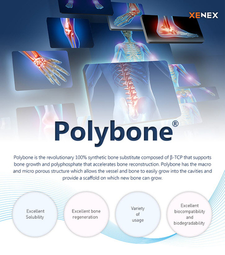 Polybone Bone Substitute