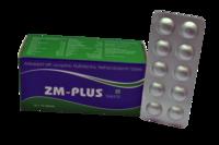 ZM Plus