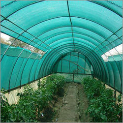 Anti Insect Nets