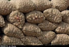 Onion Jute bags