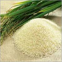 ADT 45 Rice