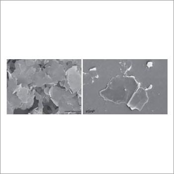 Exfoliated Graphite Nano Platelets
