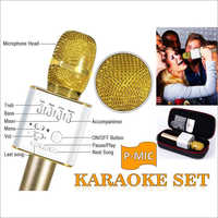 Karaoke Speakers Set