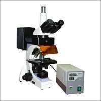 Fluorescent Binocular Microscope