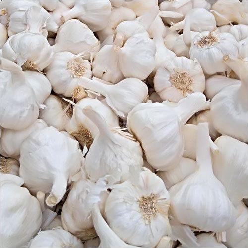 Rajasthani Garlic