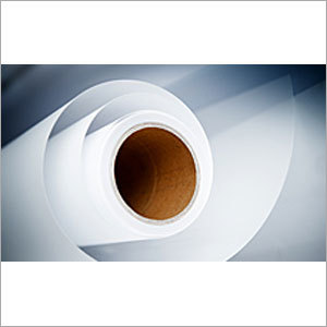 Paper Biocides