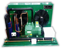 Condensing Unit for Freezer Room AFR-21