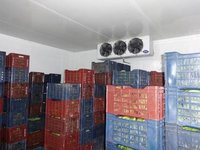 Evaporator Unit for Cold Room 12