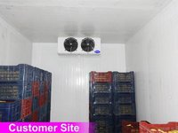 Evaporator Unit for Freezer Room 12
