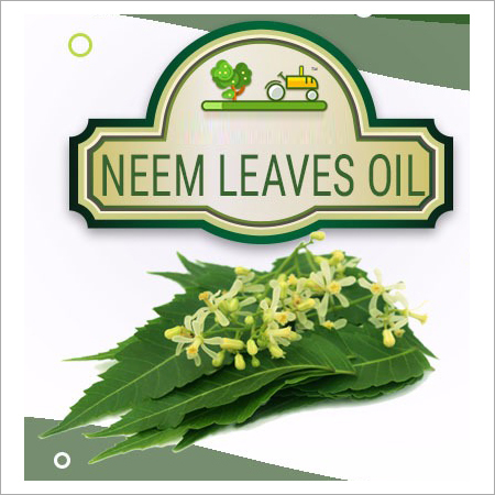 Neem Leaves Oil