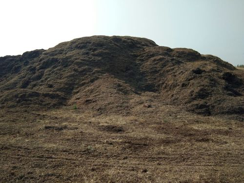 Biomass Coal Powder