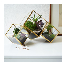 Brass Finish Glass Terrarium