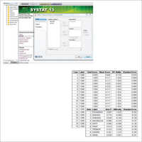 Systat 13 Software