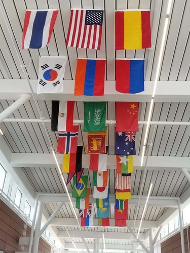 Ceiling Hanging Flag 4