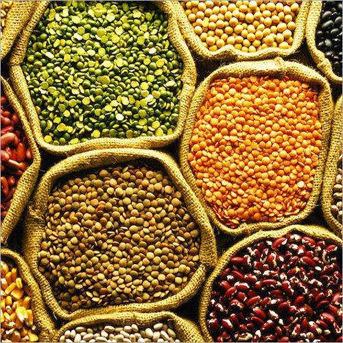 Pulses - Pulses Suppliers, Manufacturers & Exporters of Toor Dal