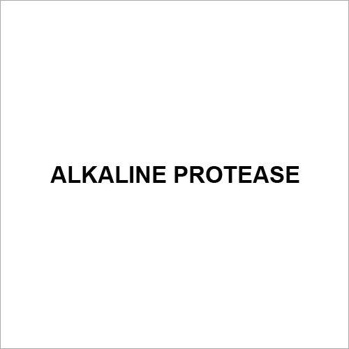 Alkaline Protease
