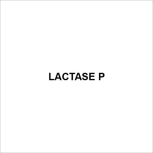 Lactase P