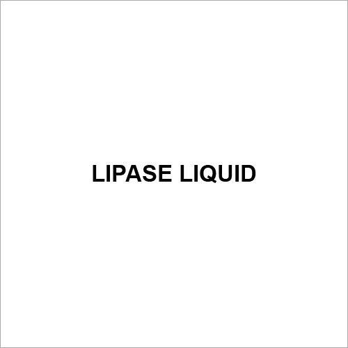 Lipase Liquid
