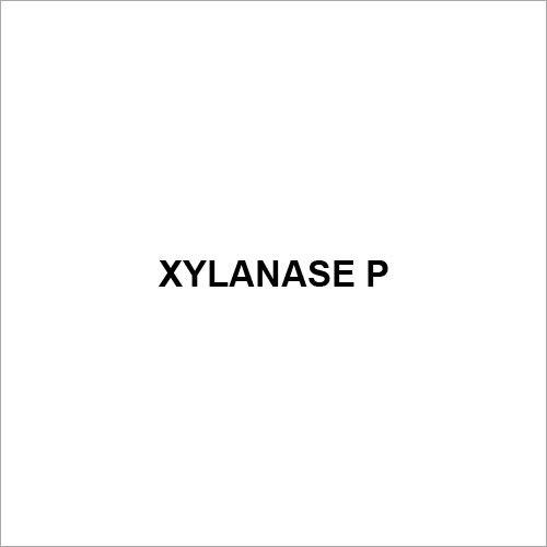 Xylanase P