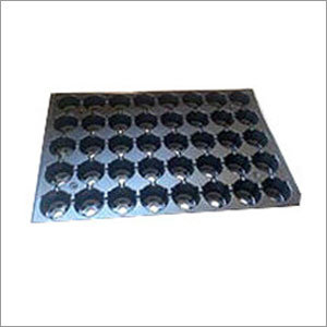 40 Cavity Plastic Seedling Tray