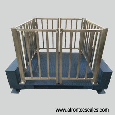 Livestock Platform Scales