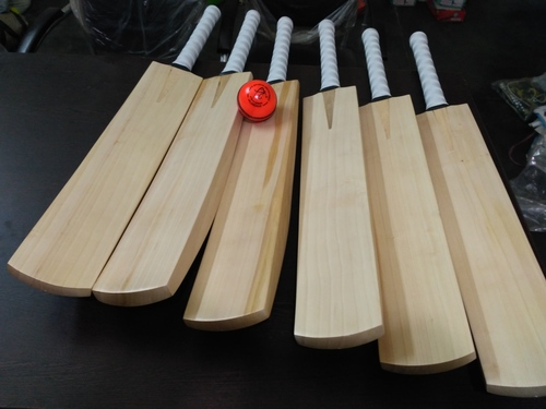 APG Plain English Willow Cricket Bats
