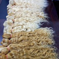 BLONDE CURLY TEMPLE HAIR