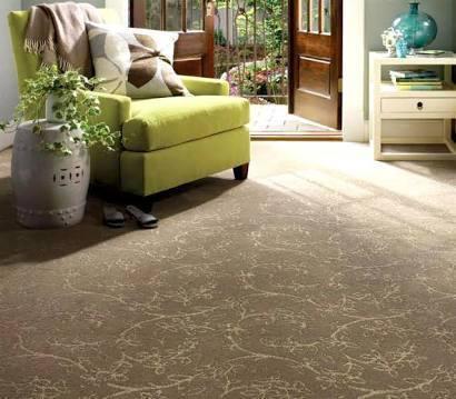 Carpet Flooring For Home