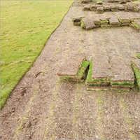 Synthetic Green Grass Mat