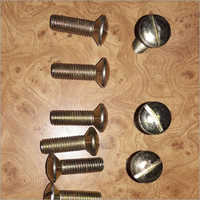 CSK Raised Head Screw