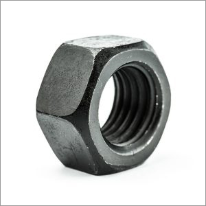 Plain Hex Nut